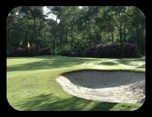 Golfbaan_geijsteren_jachthaven_wanssum